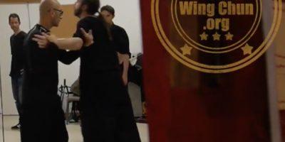 Prises relaxées dans le Wing Chun interne