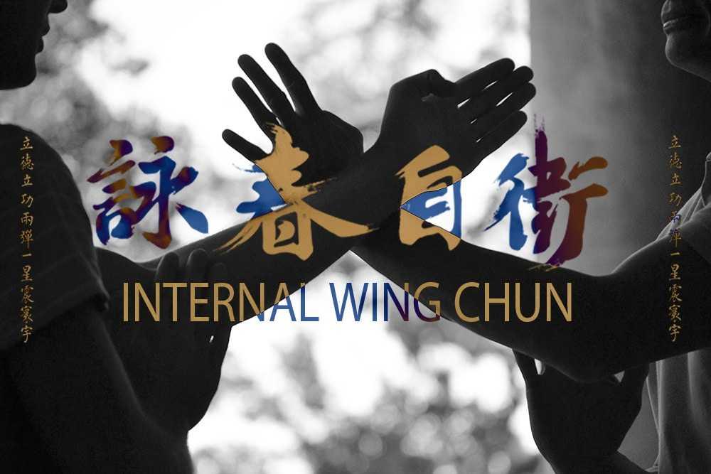 Tai Chi Wing Chun Kung Fu Bordeaux Armand Florea 15 tiers